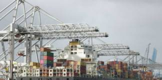 Das ECT Delta Terminal in Rotterdam wird verstärkt von Schiffen der Reederei MSC angelaufen